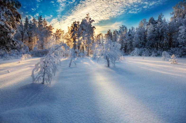 ShockBlast_winterlight(1)