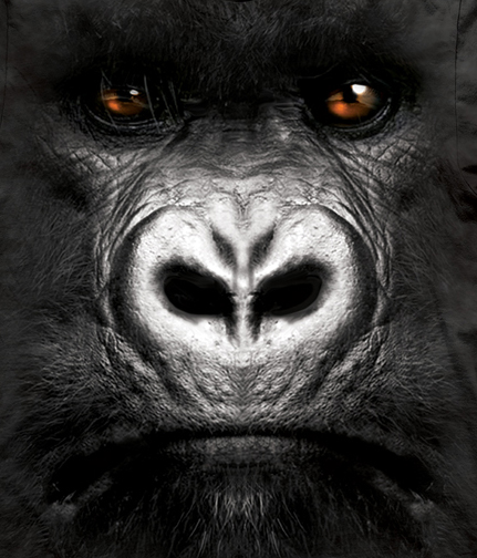 animal face tees shockblast tumb wrong something