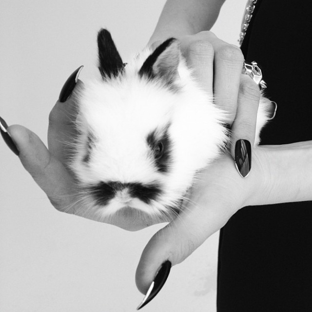ShockBlast-Cara_Delevingne-Kittents-Nick_Knight-15