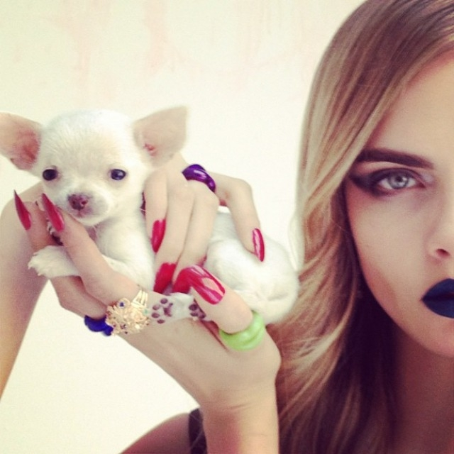 ShockBlast-Cara_Delevingne-Kittents-Nick_Knight-19