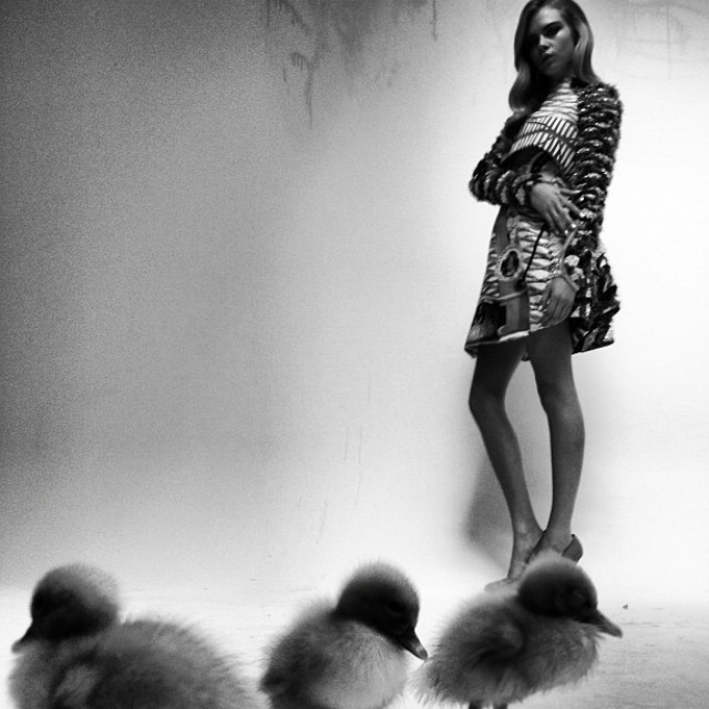 ShockBlast-Cara_Delevingne-Kittents-Nick_Knight-4