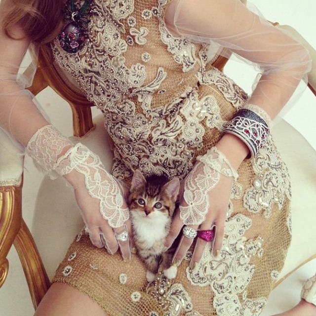 ShockBlast-Cara_Delevingne-Kittents-Nick_Knight-7