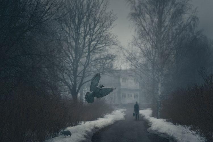 ShockBlast-Mikko_Lagerstedt-bird