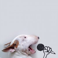 Artists Rafael Mantesso uses his bull terrier in clever sketches - ShockBlast