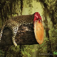 Print Ads Show Effects Of Deforestation - ShockBlast