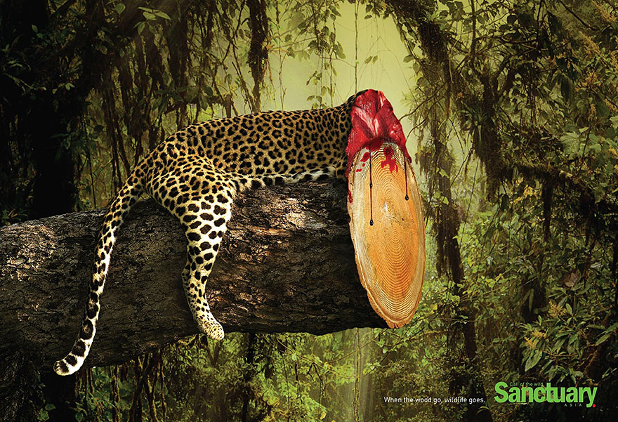 Print Ads Show Effects Of Deforestation