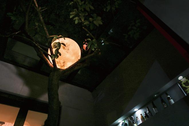 acorn-studio-luna-moon-lamp-ShockBlast-4