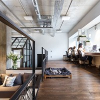 Circle Line Interiors' elegant office - ShockBlast