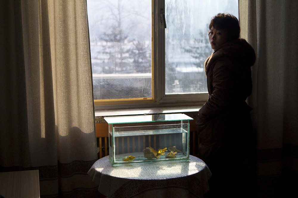 In this Monday, Jan. 16, 2012 photo, light shines through a window on to a tank filled with goldfish inside an office at the Korean Central News Agency building in Pyongyang, North Korea. Daily life to the North Korean capital has begun to return to normal one month after late leader Kim Jong Il's death. (AP Photo/David Guttenfelder)
