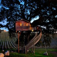 Tree house in the Tuscany's countryside - ShockBlast