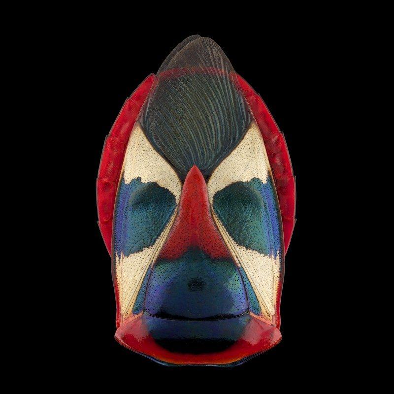 mask-totem-by-pascal-goet-ShockBlast-1