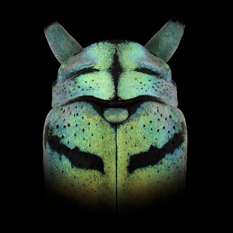mask-totem-by-pascal-goet-ShockBlast-11