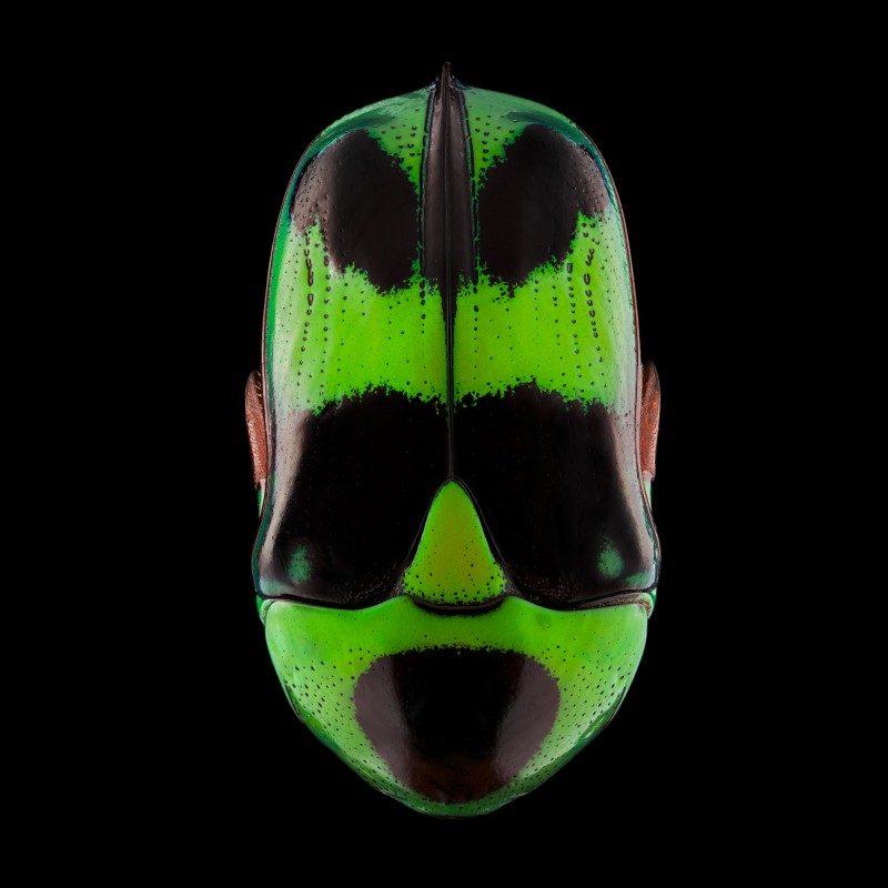 mask-totem-by-pascal-goet-ShockBlast-13